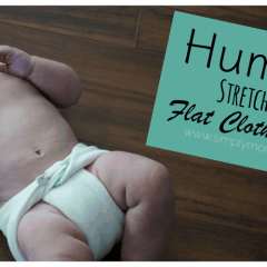 Flat Cloth Diapers: HumBird Stretchy Hemp Flats