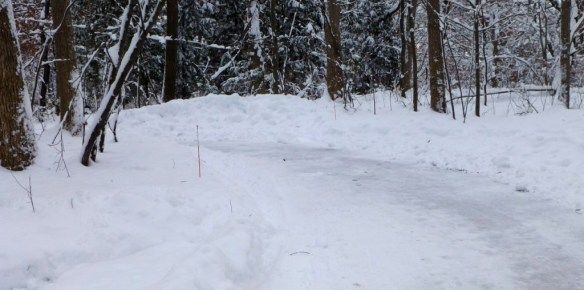 Snowplowed 2