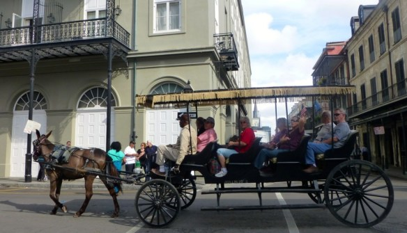 Horse Drawn Carriage, New Orleans, Louisiana