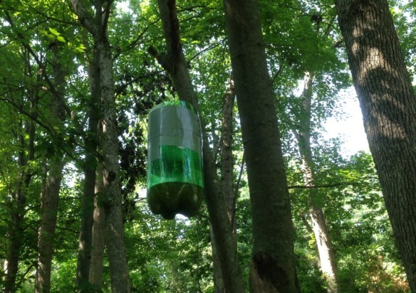 Hanging Mosquito Trap