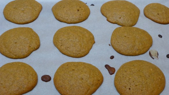 Sweet Plantain Biscuits