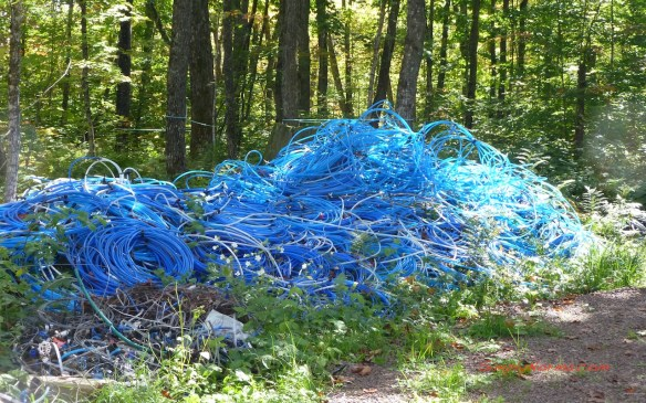 Plastic Tubing for Sap Collection