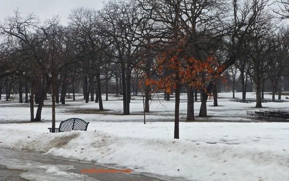 Minnehaha Park, March 2014