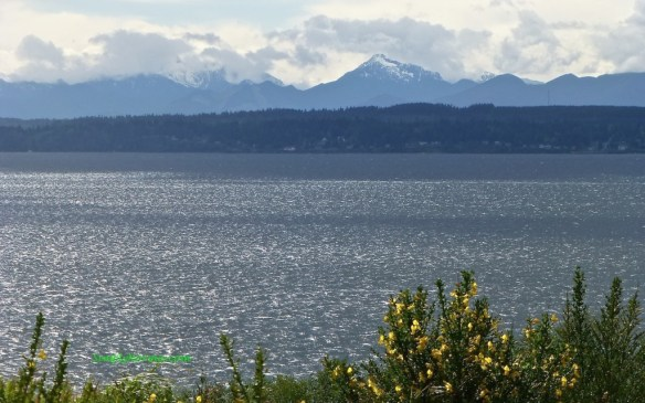 Olympic Mountains, Richmond Beach, WA