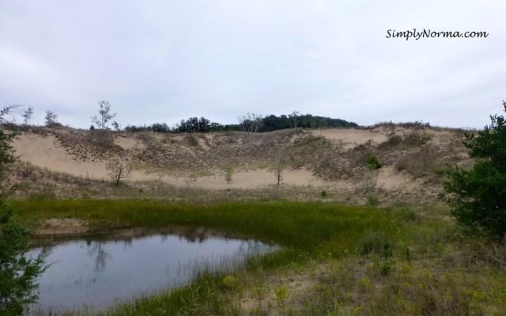 Indiana Sand Dunes