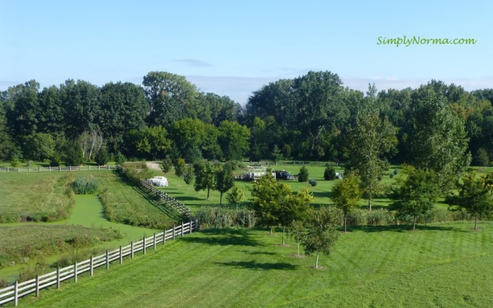 View from the top, Windmill Island Gardens, Holland, Michigan