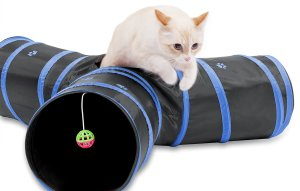 One of the best holiday gifts for cats for active pets