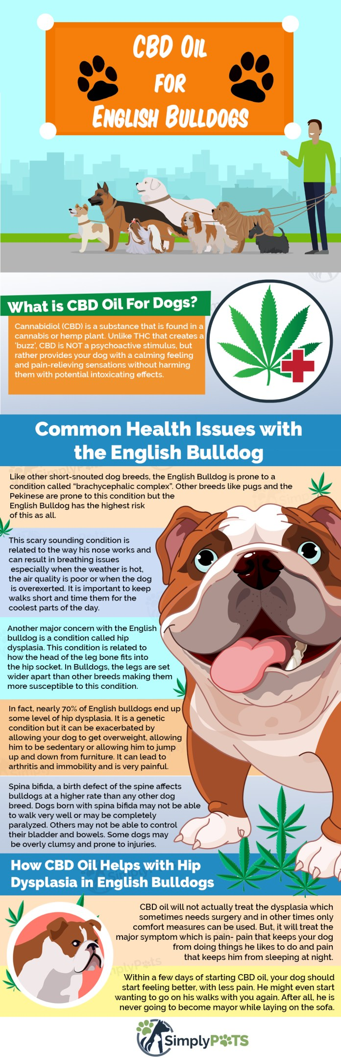 Hemp For English Bulldogs