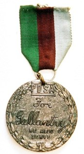 Animals Deserve Medals Too.