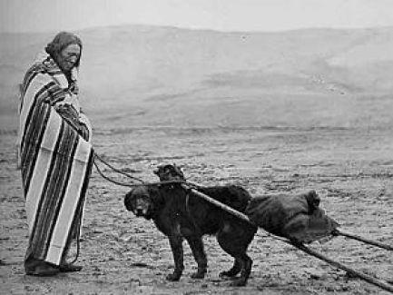 Native American Haulers.
