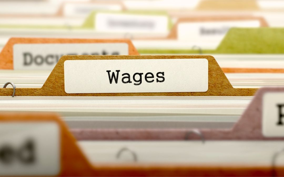 What is the Wages Protection System (WPS)