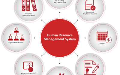 Why a Human Resource Management System Make Good Business Sense