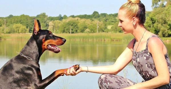 Woman Holding a Doberman's Paw in Front of a Lake