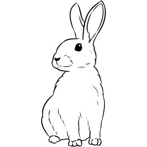 Bunny Rabbit Craft Stamp
