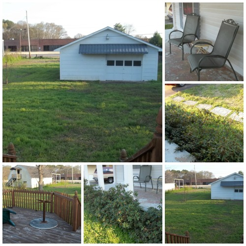 Yard Pictures