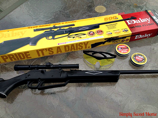 Daisy BB Gun with Package