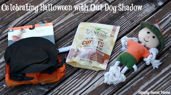 Celebrating Halloween with our Dog Shadow