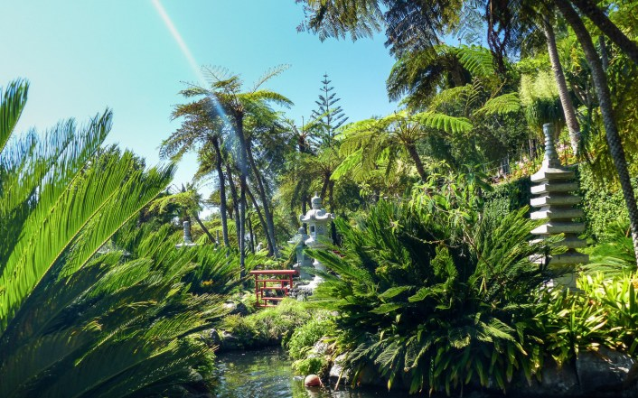 Jardin tropical, Monte, Madere