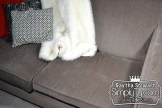 Sinking sofa1111