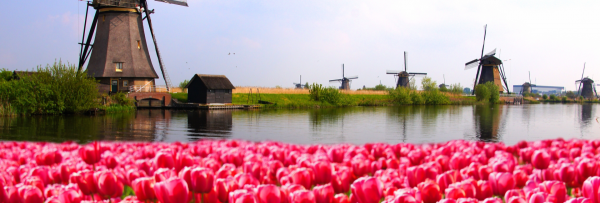 A sellers Guide: VAT in The Netherlands