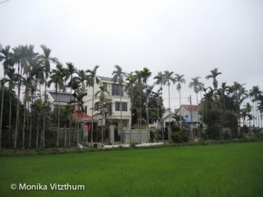 Vietnam_2020_Hoi_An-2