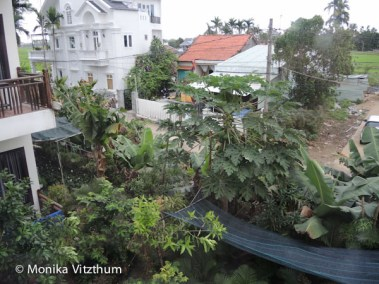 Vietnam_2020_Hoi_An-6435