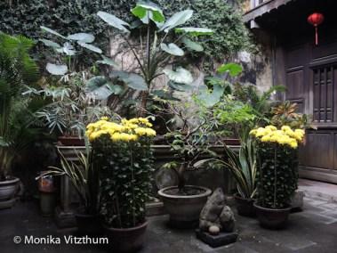 Vietnam_2020_Hoi_An-6513