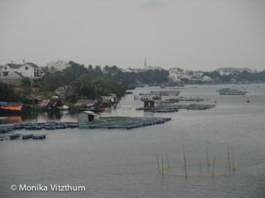 Vietnam_2020_Hoi_An-6700