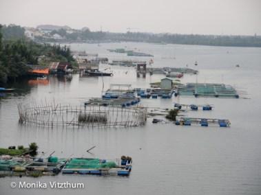 Vietnam_2020_Hoi_An-6710