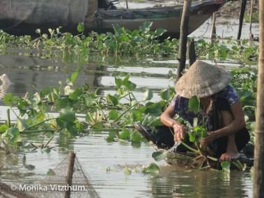 Vietnam_2020_Mekongdelta_2020-6142
