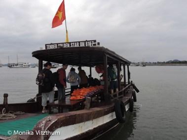 Vietnam_2020_Halong_Bay-7982