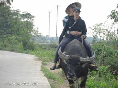 Vietnam_2020_Lady_Buddha-6952