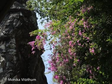 Vietnam_2020_Lady_Buddha-7077