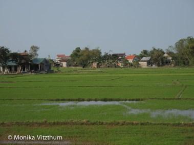 Vietnam_2020_Wolkenpass_Hue_Kaiserpalast-7454