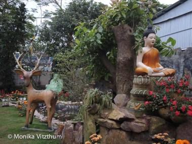 Vietnam_2020_Wolkenpass_Hue_Kaiserpalast-7849