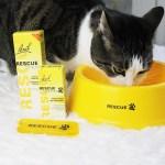 Bach Pet Rescue