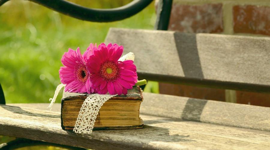prachtige plekjes om te lezen