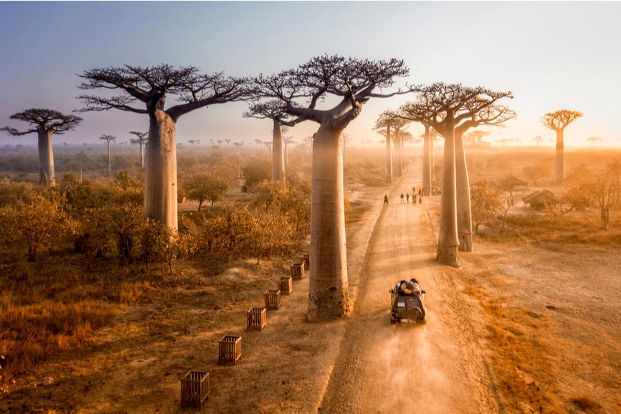 (ei)landen in Afrika