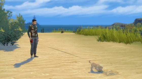 Hond uitlaten