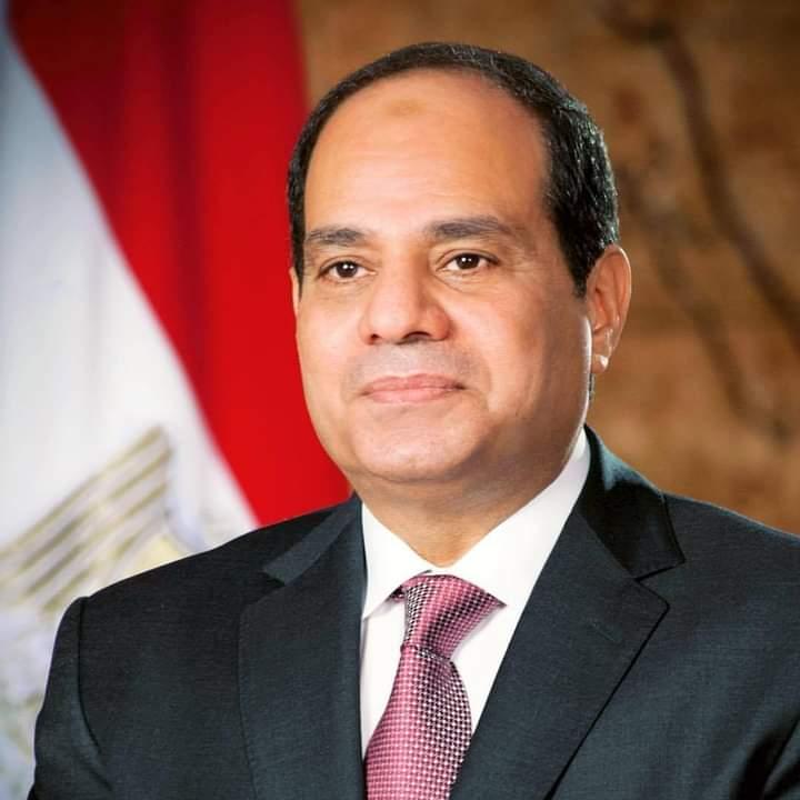 قرار جمهوري بتخصيص أراض في شمال سيناء لمشروعات إنتاج داجني وحيواني