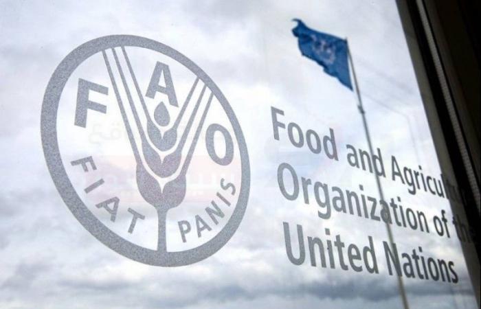 الأمم المتحدة تتوقع أن يتراجع استهلاك اللحوم في الدول الصناعية خلال الأعوام الـ10 المقبلة