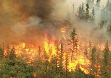 إيطاليا تواصل مكافحة العديد من حرائق الغابات في الحديقة والمحمية الوطنية