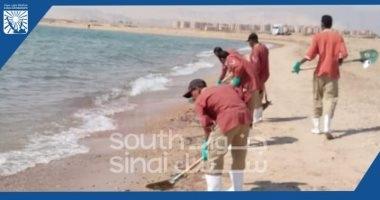 حملة لتنظيف الشاطئ العام فى أبورديس بجنوب سيناء من ملوثات الزيوت