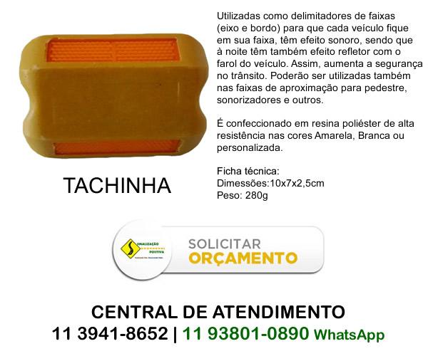 Tachina