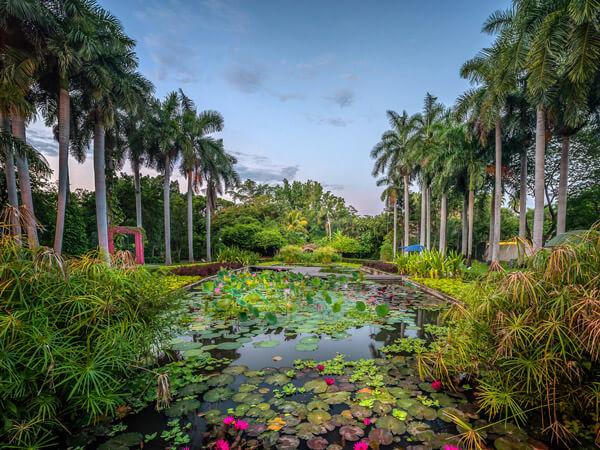 Botanical Garden of Culiacan