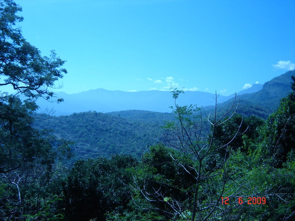 Munnar in Pictures