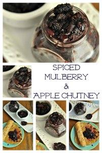Spiced Mulberry Chutney Recipe