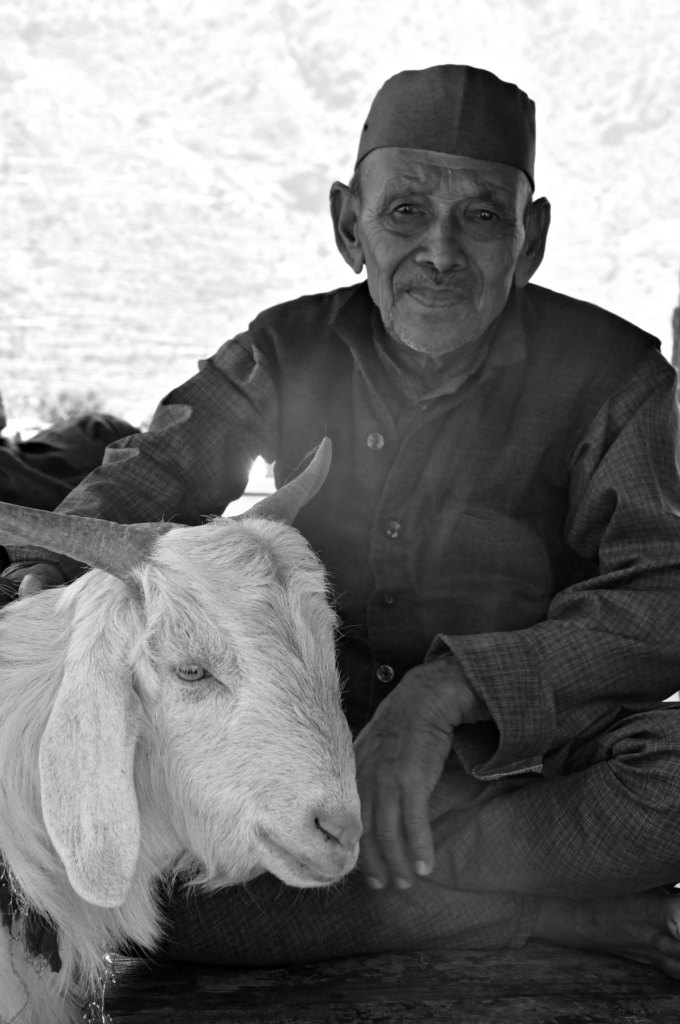 Man and his goat