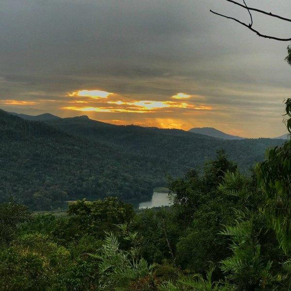 Java Rain