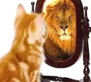 Cómo aumentar tu Autoestima según tu Signo Zodiacal